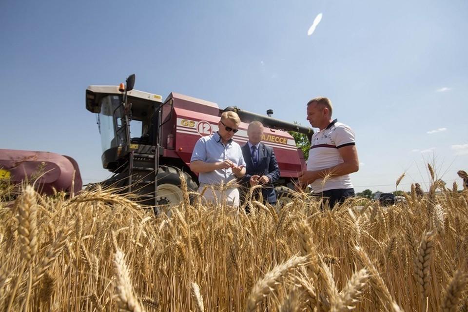У сельхозпроизводителей недостаточно информации о том, что могут производить местные предприятия