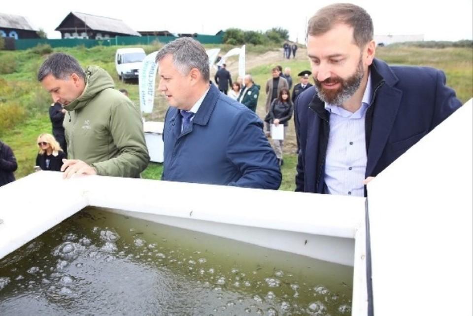 Александр Ведерников принял участие в акции по выпуску мальков сазана в реку Усольского района.