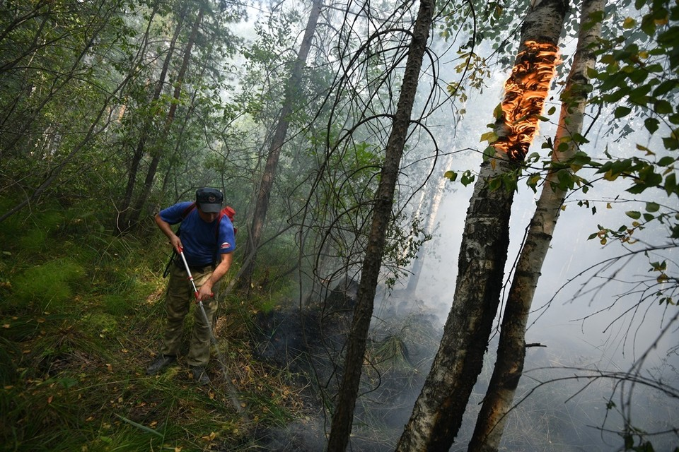 В отдельных районах сохранится высокий и чрезвычайный уровни пожароопасности.