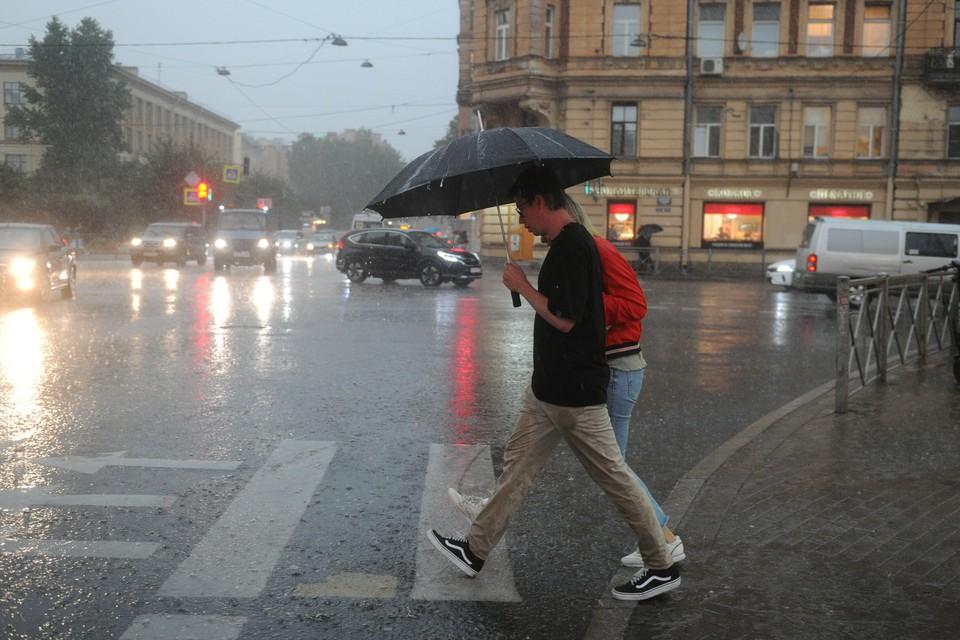 В ближайшие сутки в Петербурге будет пасмурно и дождливо.