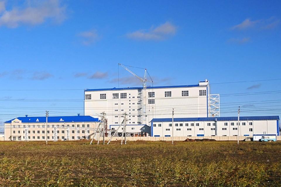 Завод - это лишь одна из частей кластерного проекта, который способен в корне изменить облик сельского хозяйства страны. Фото: Владимир НИКИТИН